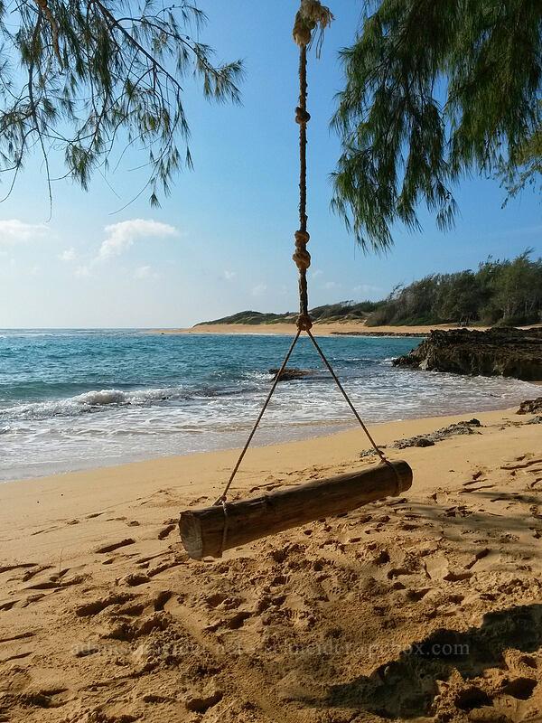 homemade beach swing [Kawailoa Bay, Maha'ulepu, Kaua'i, Hawaii]