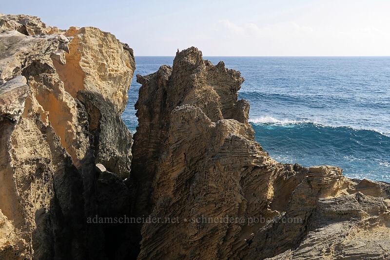 sharp sandstone [Pao'o Point, Maha'ulepu, Kaua'i, Hawaii]