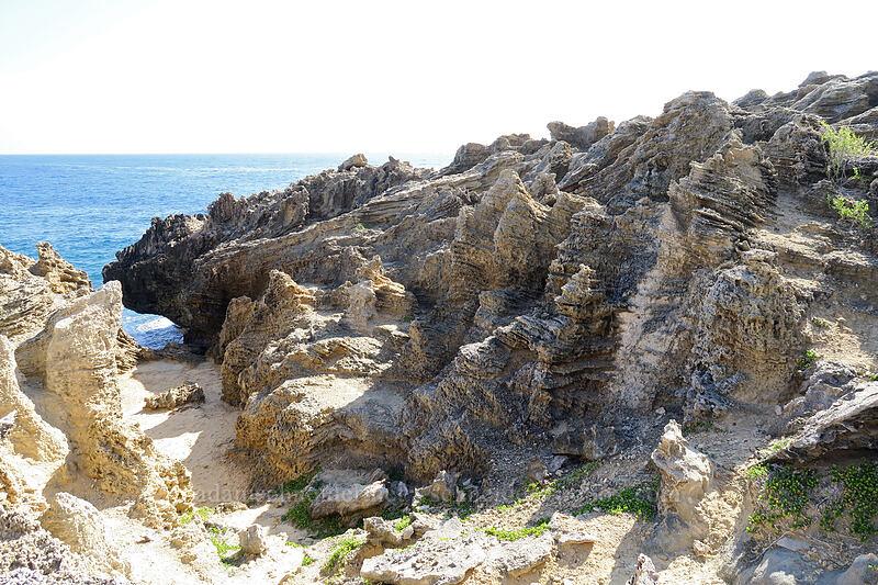 eroded sandstone [Pao'o Point, Maha'ulepu, Kaua'i, Hawaii]