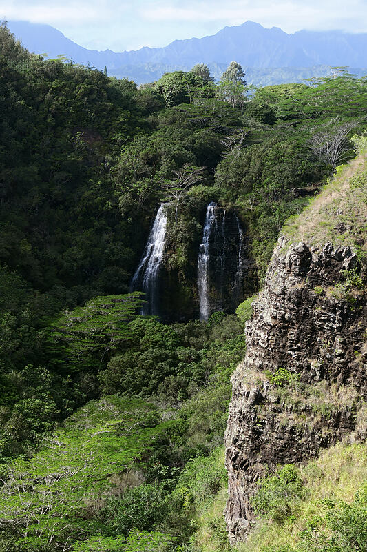 Opaeka'a Falls [Opaeka'a Falls Overlook, Wailua, Kaua'i, Hawaii]