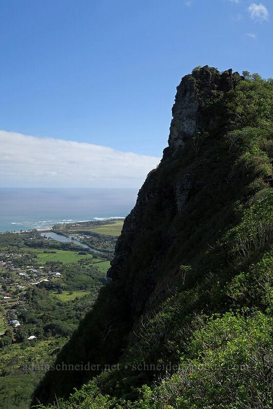 Nounou's summit and Wailua River [Nounou Mountain, Wailua, Kaua'i, Hawaii]