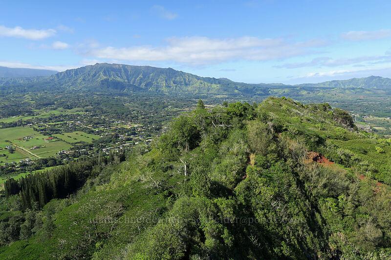 Nounou & Makaleha [Nounou Mountain, Wailua, Kaua'i, Hawaii]