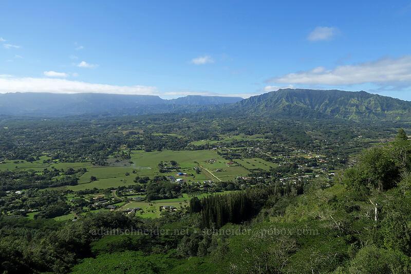 Wai'ale'ale & Makaleha [Nounou Mountain, Wailua, Kaua'i, Hawaii]