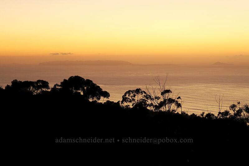Ni'ihau & Lehua, after sunset [Makaha Ridge Road, Pu'u ka Pele Forest Reserve, Kaua'i, Hawaii]