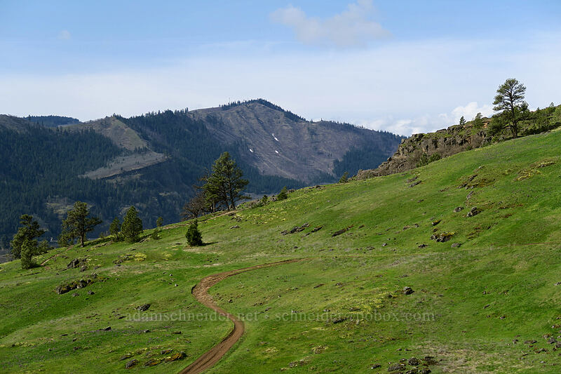 green hills in Washington & lingering snow in Oregon [Coyote Wall, Klickitat County, Washington]
