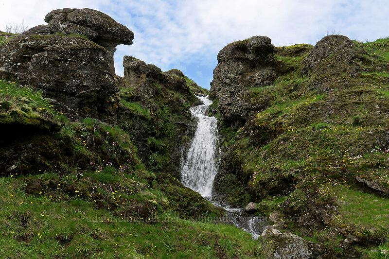 small waterfall [The Labyrinth, Klickitat County, Washington]