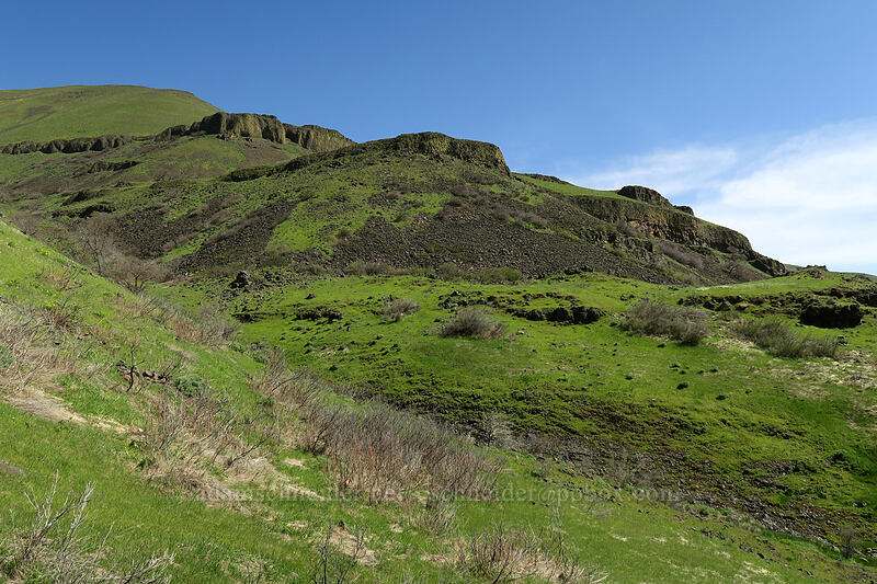 basalt terraces [Doug's Beach State Park, Klickitat County, Washington]