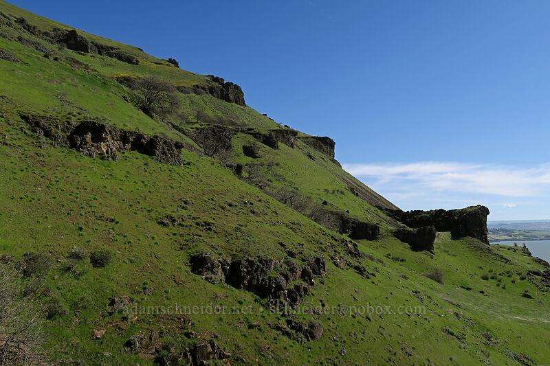 basalt cliffs & grassy slopes [Doug's Beach State Park, Klickitat County, Washington]