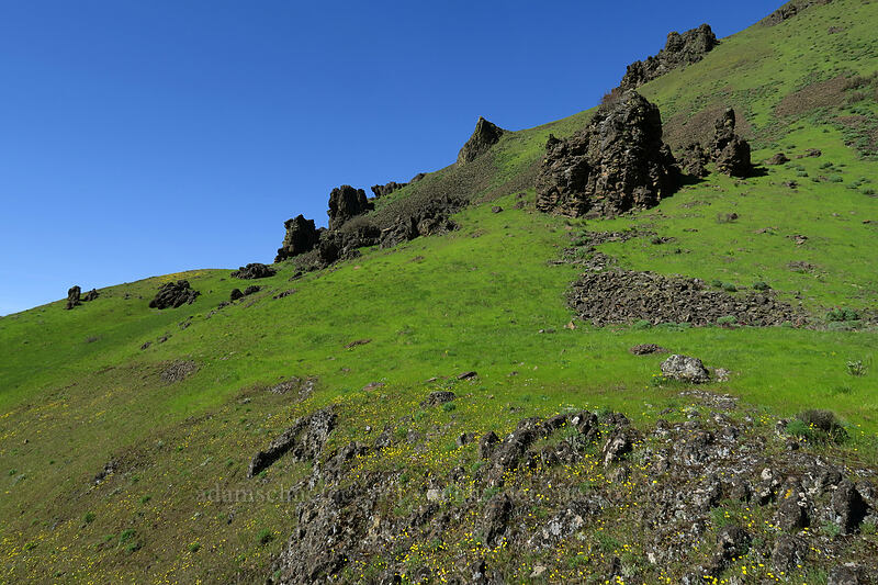 basalt pinnacles [Doug's Beach State Park, Klickitat County, Washington]