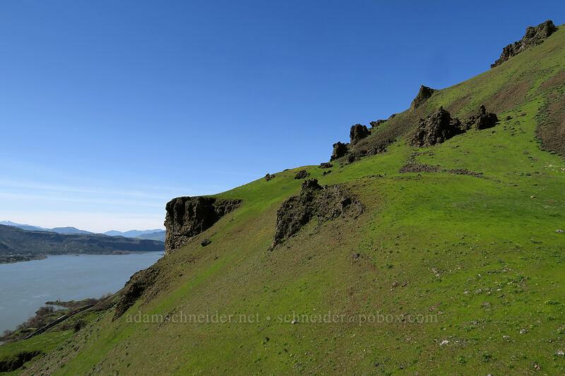 basalt pinnacles & the Columbia River [Doug's Beach State Park, Klickitat County, Washington]