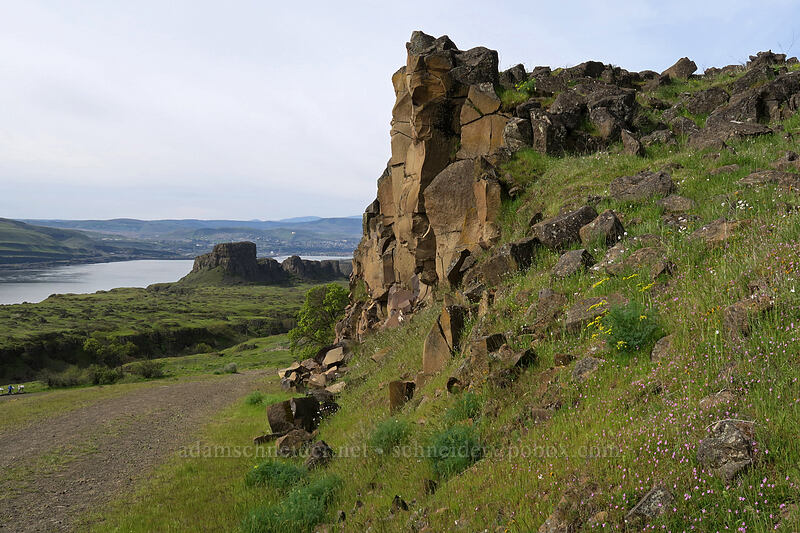 basalt crags & Horsethief Butte [Access Road, Columbia Hills State Park, Washington]