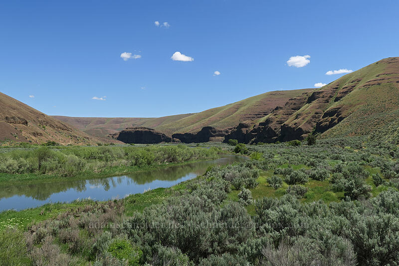 John Day River [Lost Corral Trail, Cottonwood Canyon State Park, Oregon]