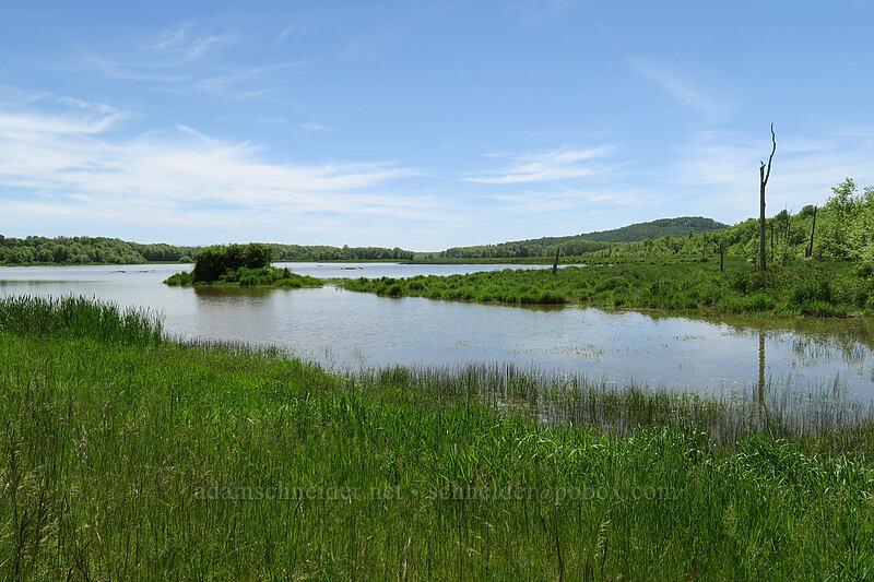 Cabell Marsh [Cabell Marsh Trail, Finley National Wildlife Refuge, Oregon]
