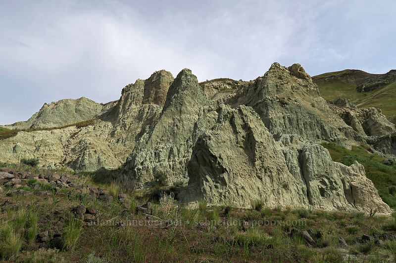 bluish rocks [Blue Basin Trail, John Day Fossil Beds National Monument, Oregon]