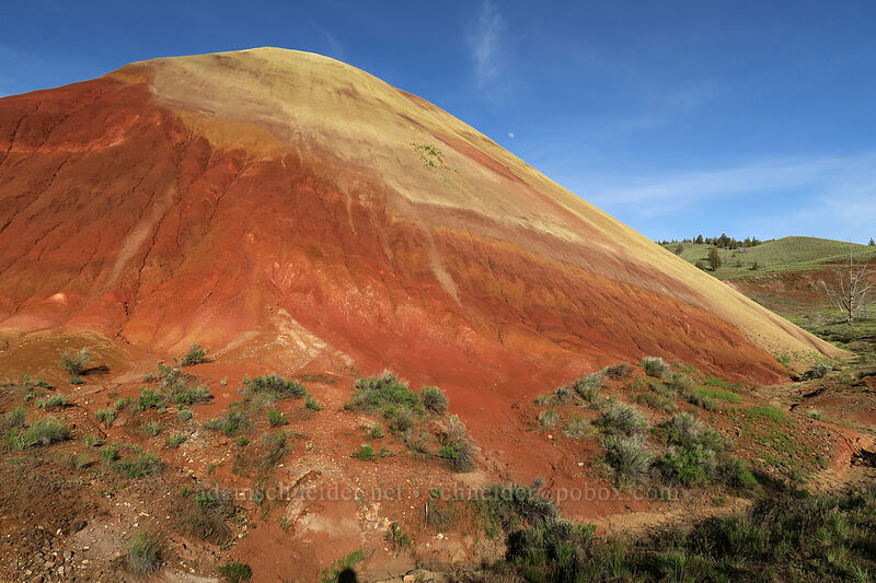 Red Scar Knoll [Red Hill Trail, John Day Fossil Beds National Monument, Oregon]