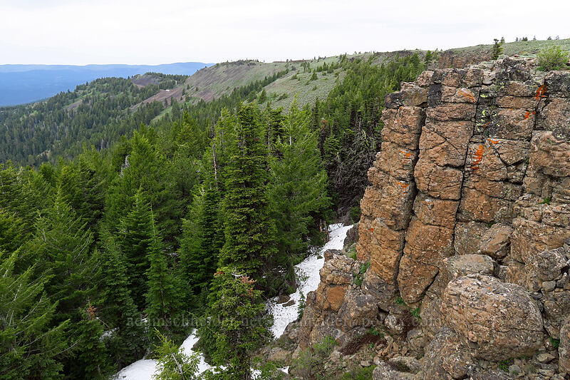 west rim of Lookout Mountain [Line Butte Tie Trail, Ochoco National Forest, Oregon]