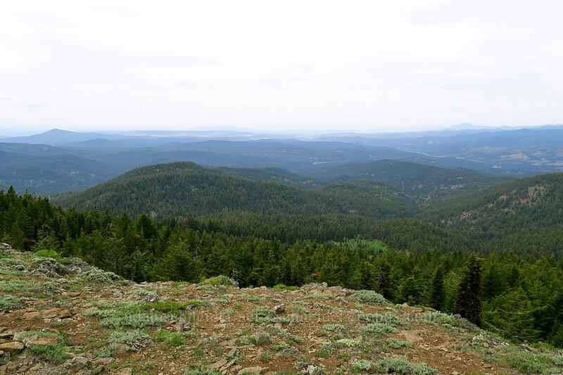 hazy view to the west [Lookout Mountain summit, Ochoco National Forest, Oregon]