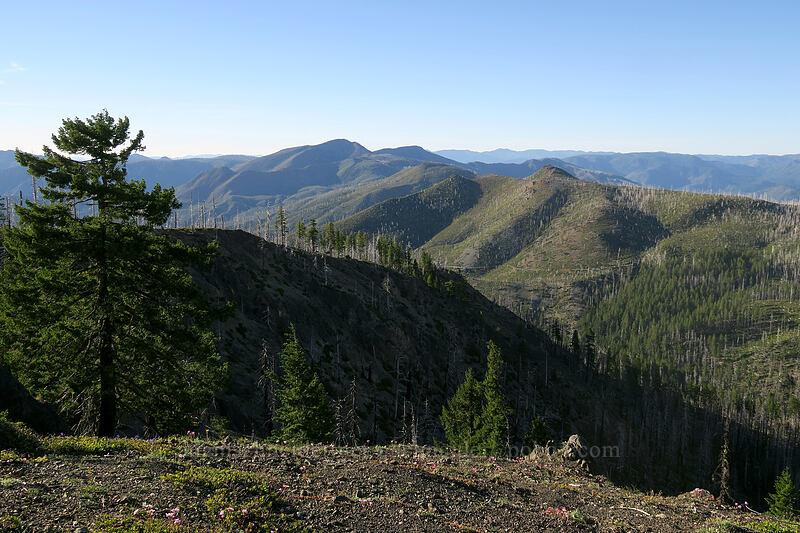 Pearsoll Peak [Babyfoot Lake Rim Trail, Rogue River-Siskiyou National Forest, Oregon]