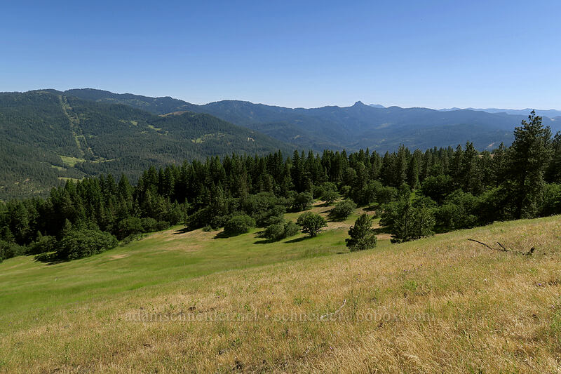 view to the south [Greensprings Mountain Loop Trail, Cascade-Siskiyou National Monument, Oregon]