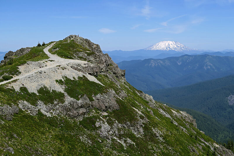 Silver Star's summit & Mt. St. Helens [Silver Star Mountain, Gifford Pinchot National Forest, Washington]