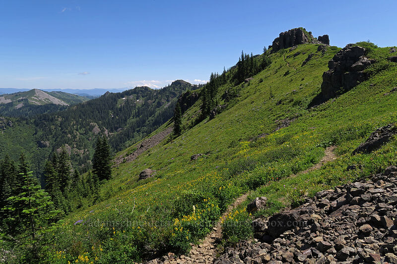 Silver Star Mountain [Ed's Trail, Gifford Pinchot National Forest, Washington]