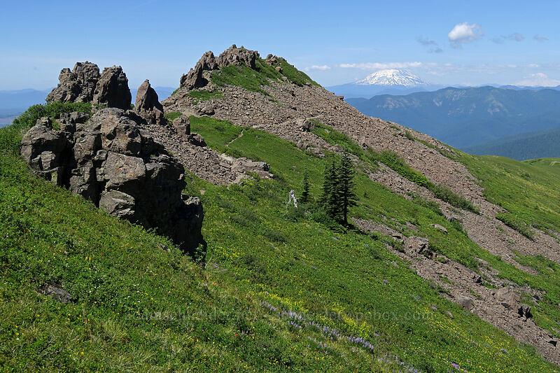 Silver Star's north ridge [Ed's Trail, Gifford Pinchot National Forest, Washington]