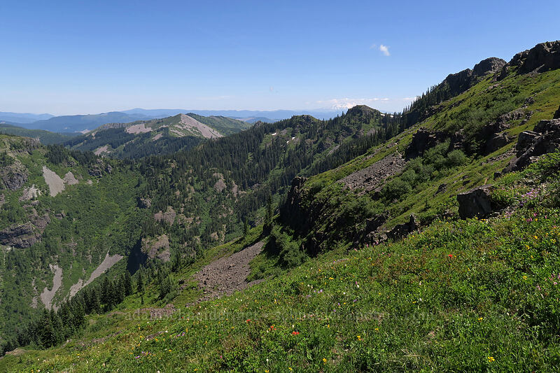 Silver Star Mountain & Star Creek Valley [Ed's Trail, Gifford Pinchot National Forest, Washington]