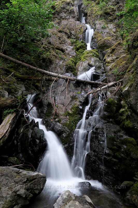 Rodney Falls [Hamilton Mountain Trail, Beacon Rock State Park, Washington]