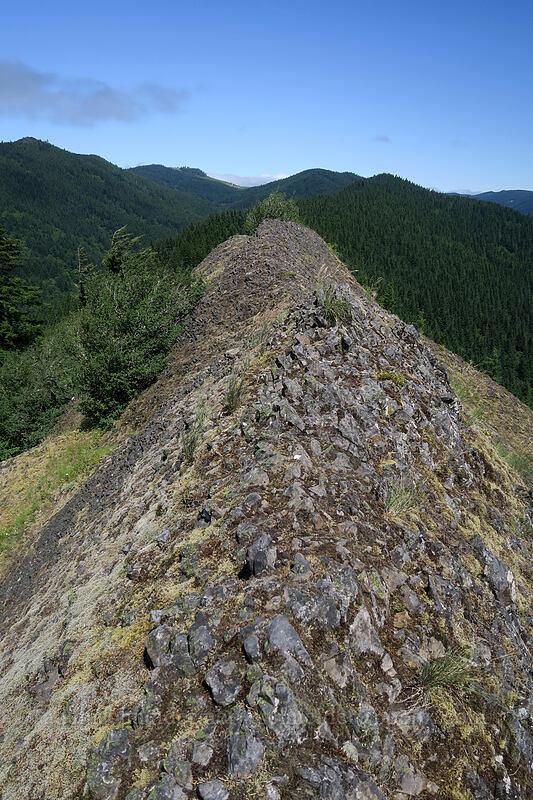 knife-edge ridge [Hamilton Mountain, Beacon Rock State Park, Washington]