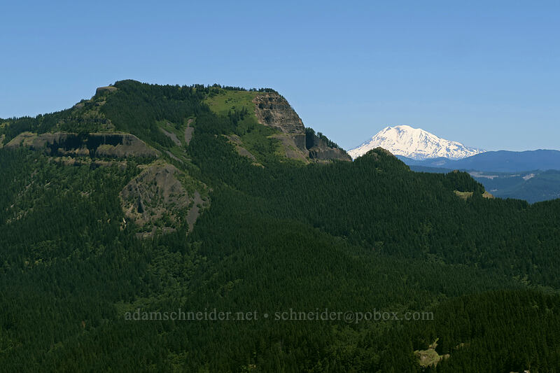 Table Mountain & Mt. Adams [Hamilton Mountain Trail, Beacon Rock State Park, Washington]