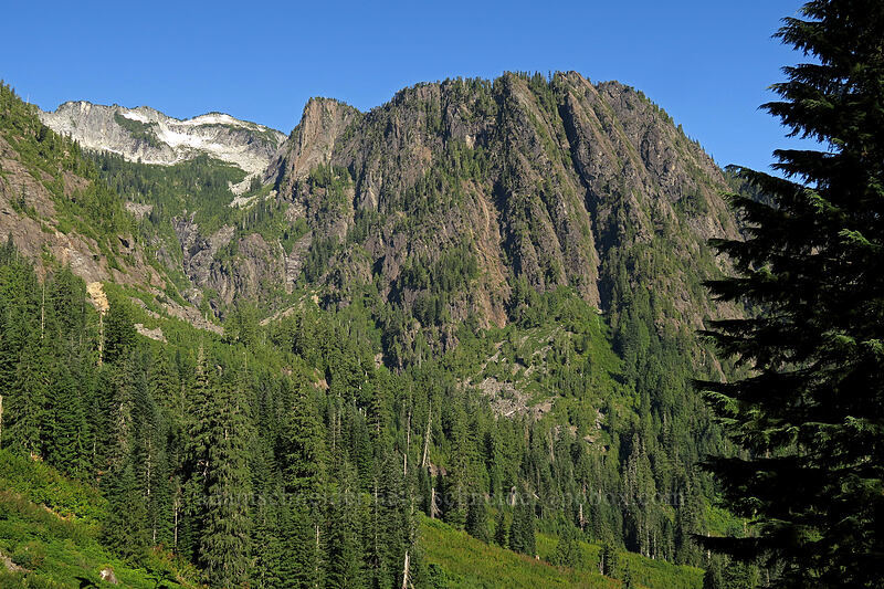 ridges south and southeast of Big Four Mountain [Sunrise Mine Trail, Mount Baker-Snoqualmie National Forest, Washington]
