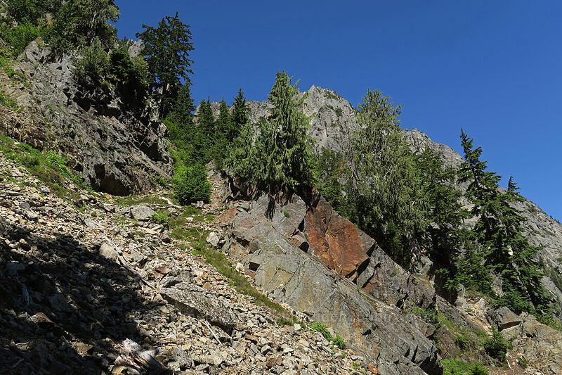 bushwhack [Sunrise Mine Trail, Morning Star NRCA, Washington]