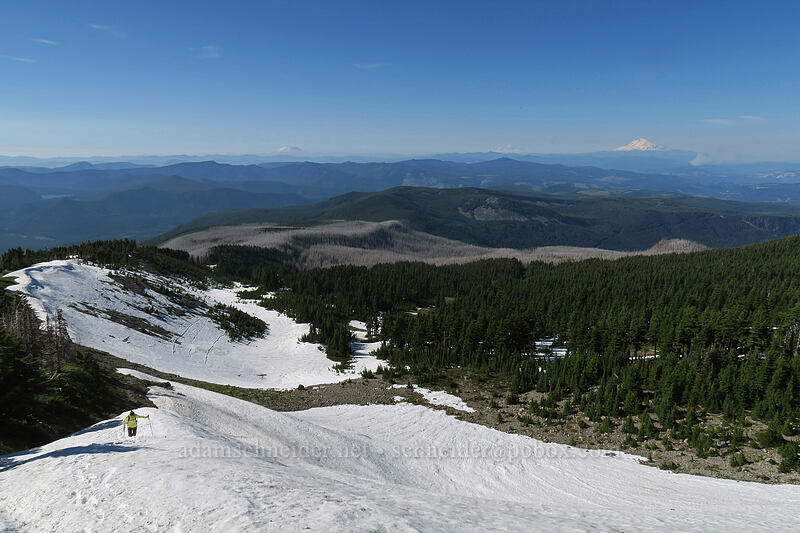 snowfields southwest of Dollar Lake [above Wy'East Basin, Mt. Hood Wilderness, Oregon]
