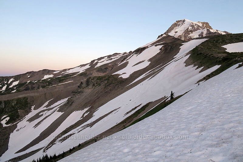 snowfields above Elk Cove [above Dollar Lake, Mt. Hood Wilderness, Oregon]