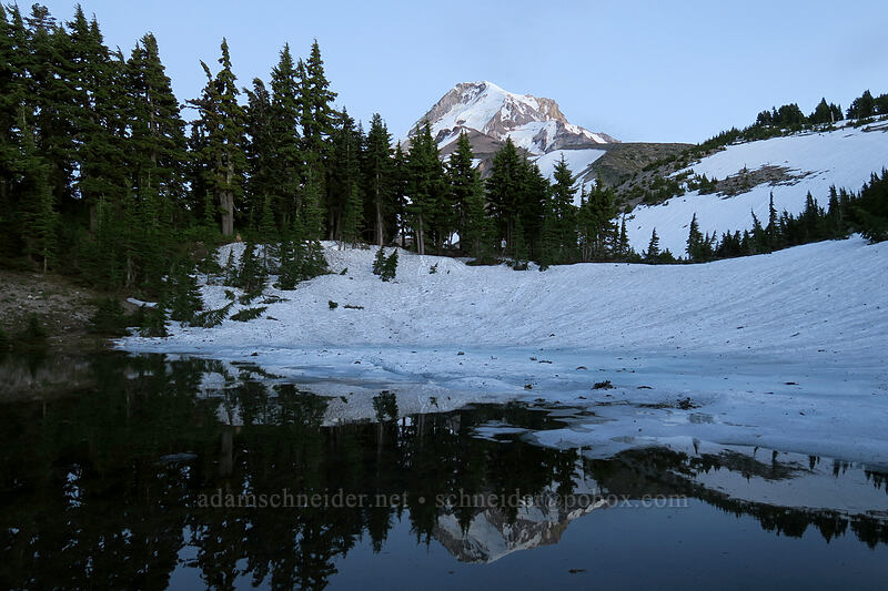 Dollar Lake & Mount Hood [Dollar Lake, Mt. Hood Wilderness, Oregon]