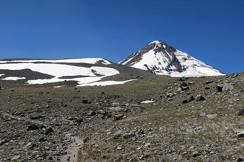 Mount Hood & Cooper Spur [Timberline Trail, Mt. Hood Wilderness, Oregon]