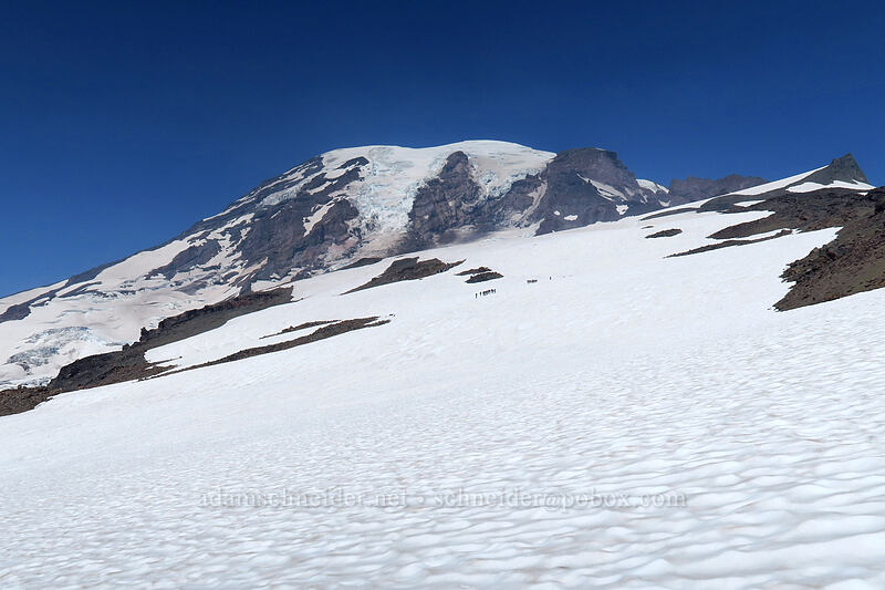 Muir Snowfield [above Paradise, Mount Rainier National Park, Washington]