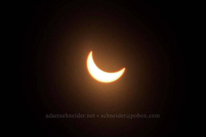 partial solar eclipse [Long Creek Mountain, Malheur National Forest, Oregon]