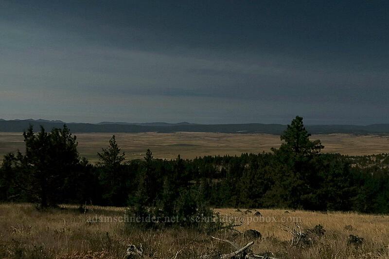 Fox Valley under a near-total solar eclipse [Long Creek Mountain, Malheur National Forest, Oregon]