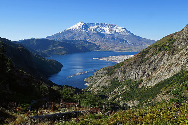 Mount St. Helens & Spirit Lake [Boundary Trail, Mt. St. Helens National Volcanic Monument, Washington]