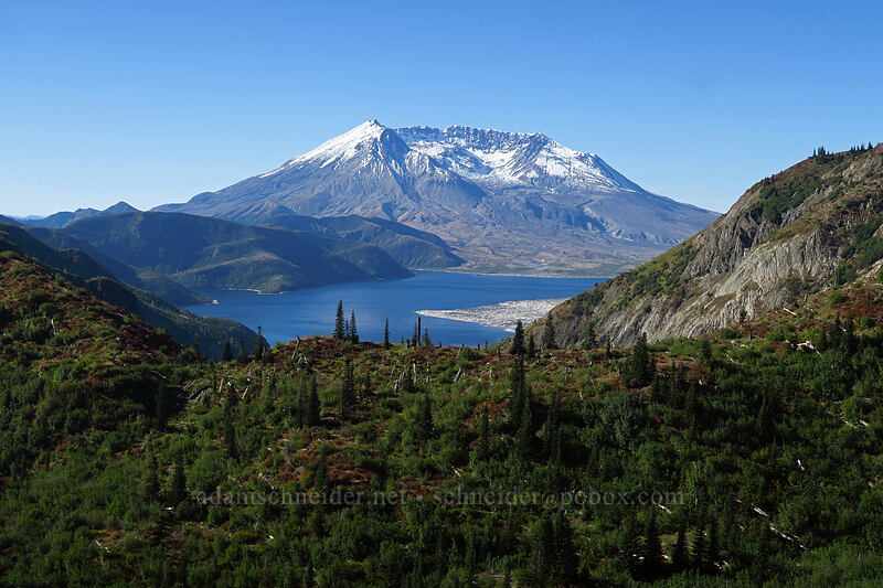 Mount St. Helens & Spirit Lake [Boundary Trail, Mt. St. Helens National Volcanic Monument, Washington]