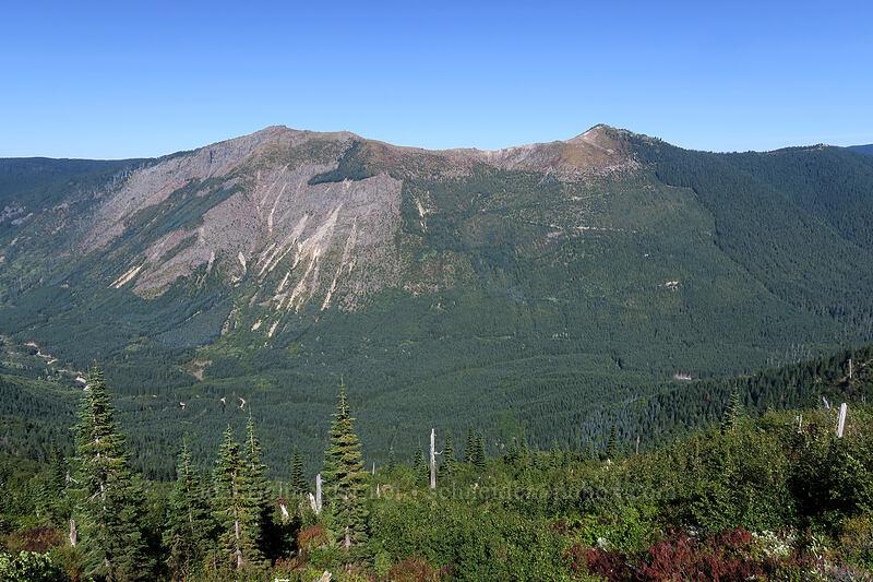 Goat Mountain [Lakes Trail, Mt. St. Helens National Volcanic Monument, Washington]