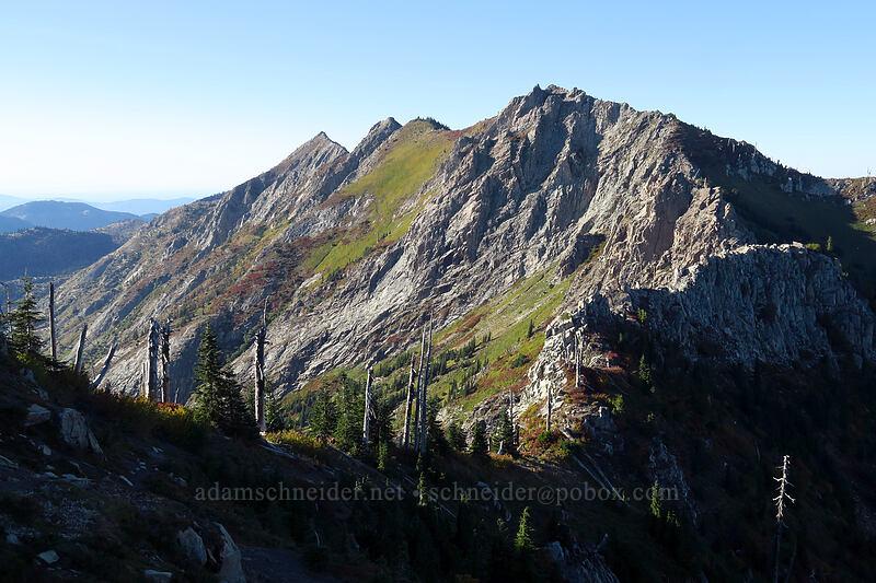 Whittier Ridge [Whittier Trail, Mt. St. Helens National Volcanic Monument, Washington]