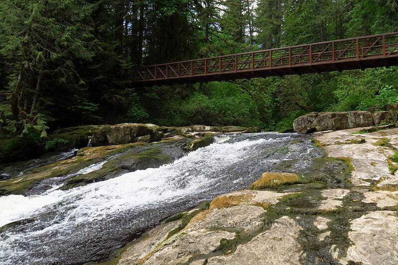 Lower Falls [Lacamas Park, Camas, Washington]