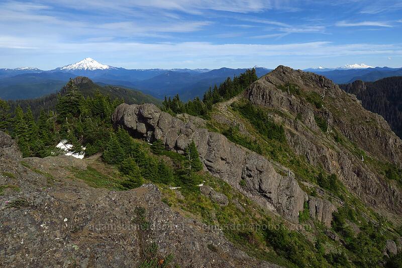 Mt. Jefferson & Sardine Mountain [Sardine Mountain, Willamette National Forest, Oregon]