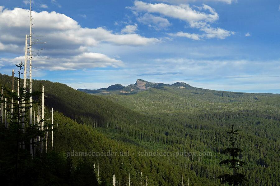 Fuji Mountain [Bunchgrass Ridge, Willamette National Forest, Oregon]