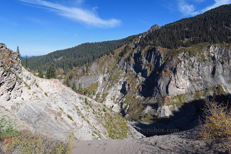 Sandy River Canyon [Pacific Crest Trail, Mt. Hood Wilderness, Oregon]