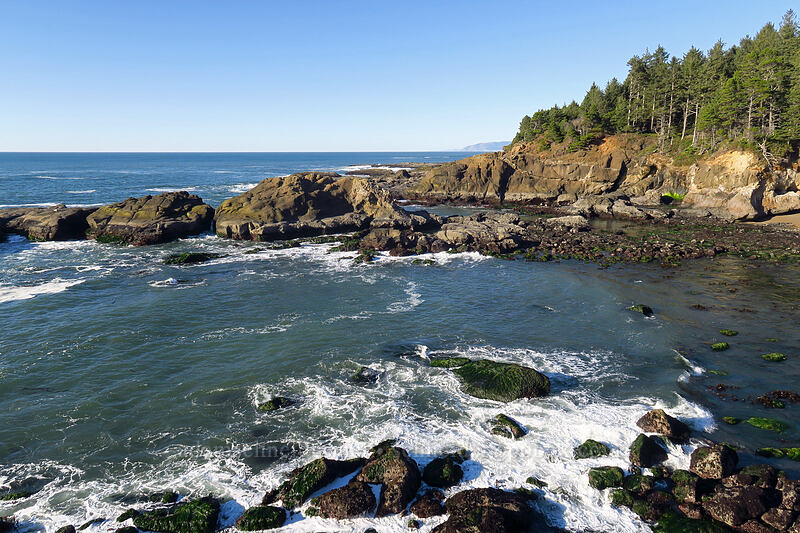 cove north of Boiler Bay [Boiler Bay Research Reserve, Lincoln County, Oregon]