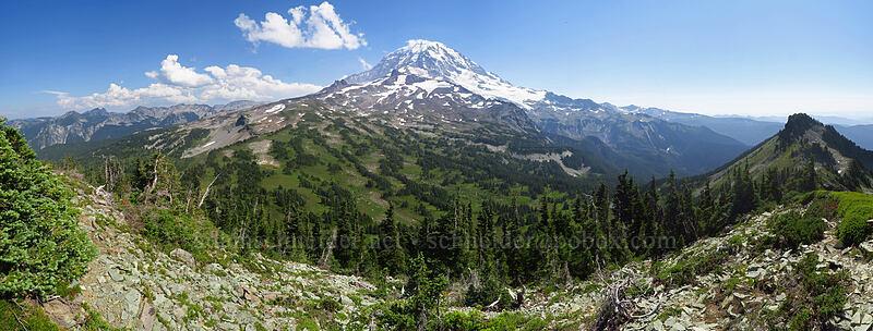Mt. Pleasant panorama [Mt. Pleasant, Mount Rainier National Park, Washington]