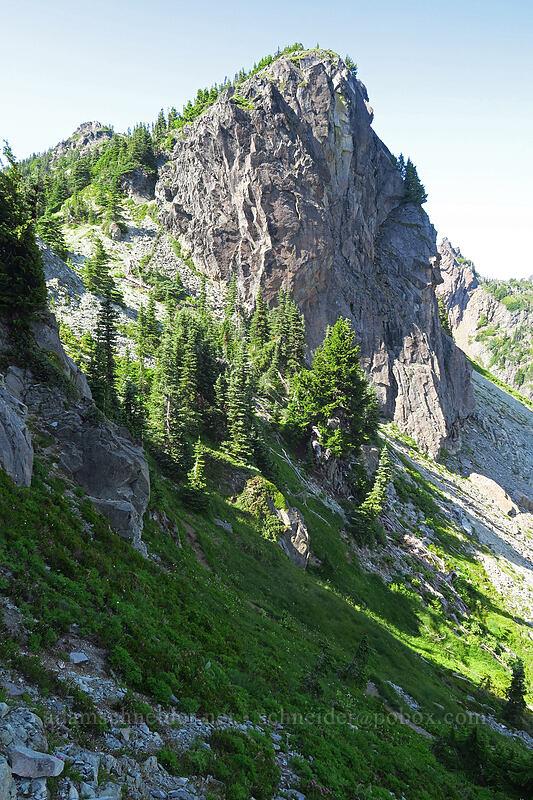 Knapsack Pass [Knapsack Pass, Mount Rainier National Park, Washington]